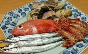 ボタン海老、ハマグリ、金目鯛、さより